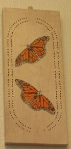 butterfly_2568