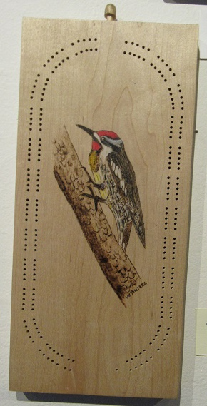cribbage woodpecker_5113