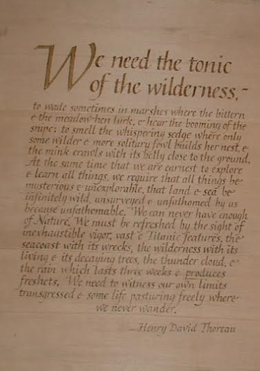 Thoreau quote We need the Wilderness words