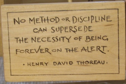 Thoreau quote_3578