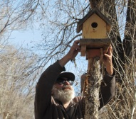 Birdhouse down_0752