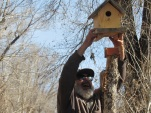 Birdhouse down_0754