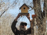 Birdhouse down_0755